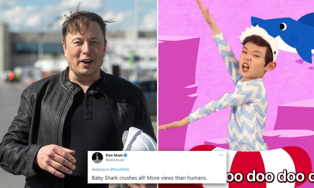 """Elon Musk's Tweet """"Baby Shark Crushes all!' Rapidly Catapults Shares Of Samsung publishing"""